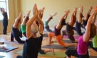 yoga-teacher training